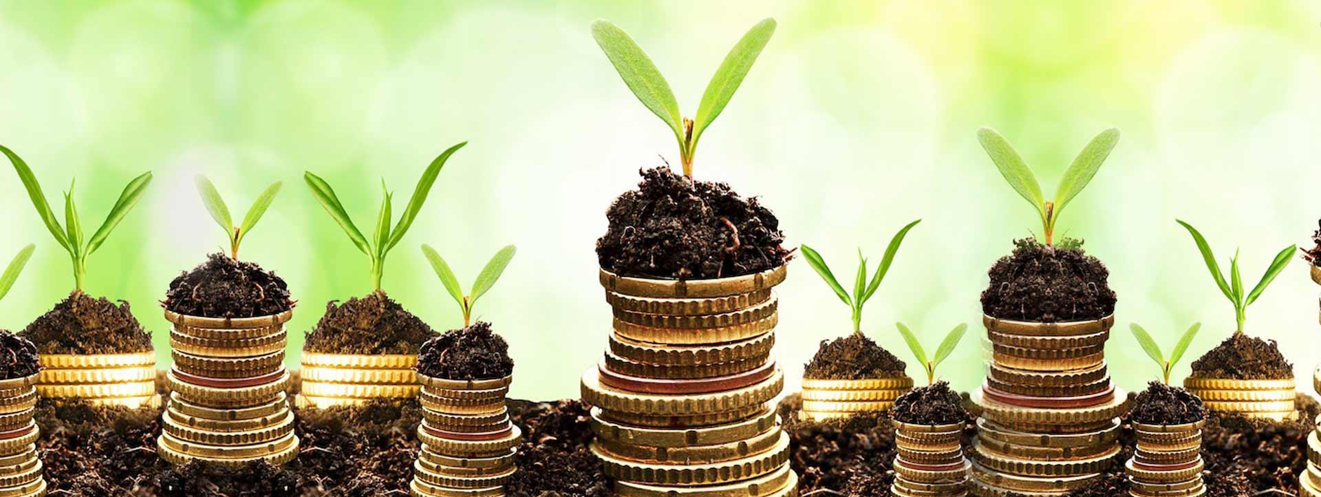 Netherlands to issue green bonds worth up to €6 billion