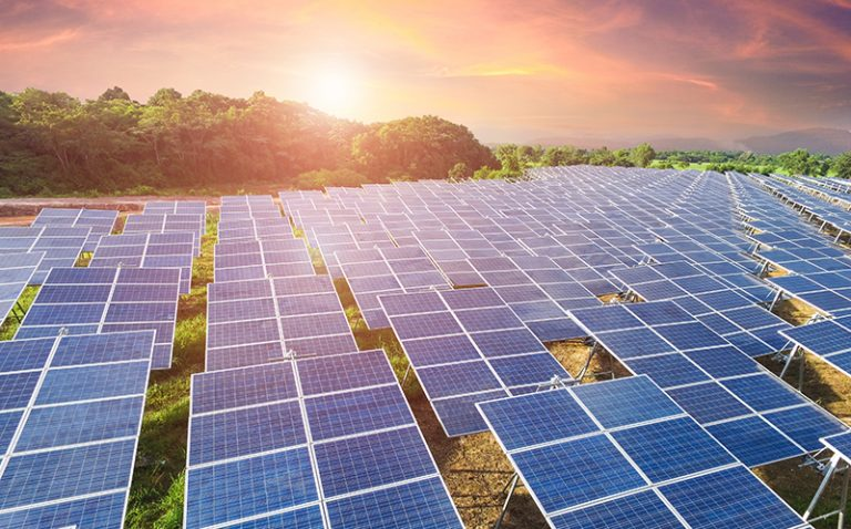 'Insanely cheap energy': how solar power continues to shock the world
